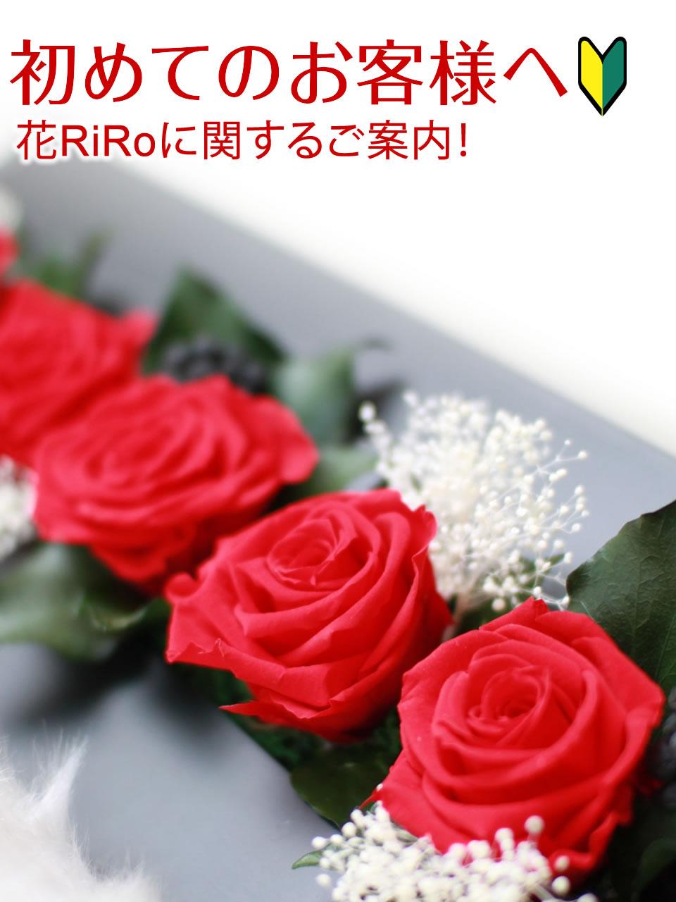 花屋-フラワーギフト-インターネット宅配花屋さん花RiRo-初めてのお客様