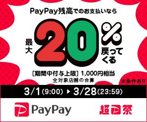 最大1,000円相当20%戻ってくるキャンペーン