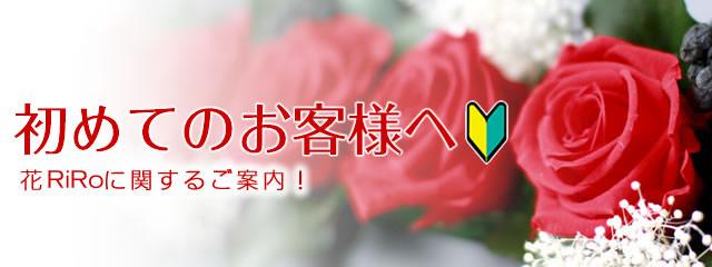 花屋-フラワーギフト-インターネット宅配花屋さん花RiRoへ初めてのお客様
