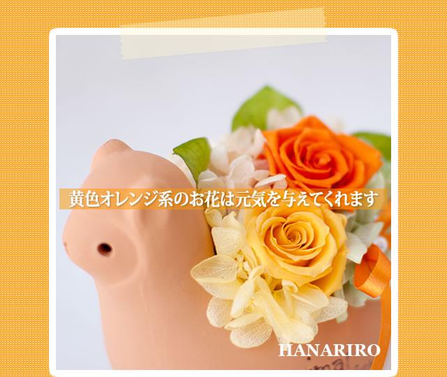 アレンジ「アルパカさんアレンジ」/プリザーブドフラワーギフト