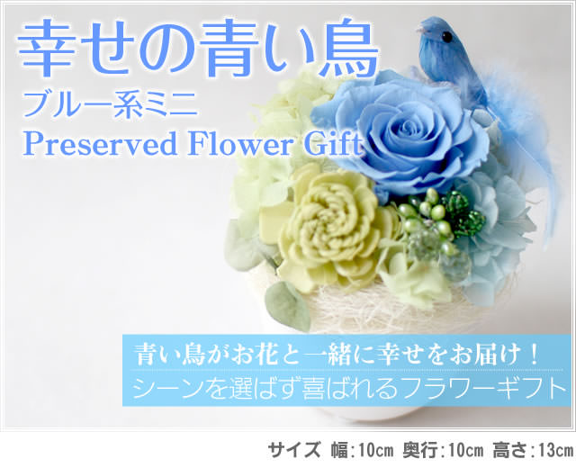 アレンジ「幸せの青い鳥(ブルーミニ)」-プリザーブドフラワーギフト-花屋-フラワーギフト-インターネット宅配花屋さん花RiRo