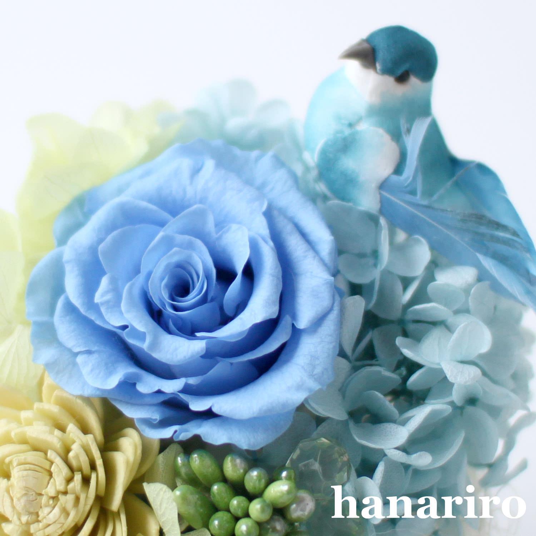 アレンジ「しあわせの青い鳥(ブルーミニ)」