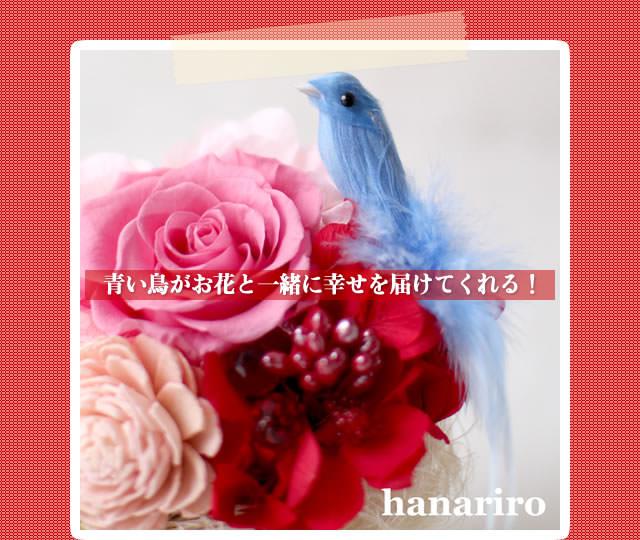 アレンジ「幸せの青い鳥(赤ピンクミニ)」/プリザーブドフラワーギフト