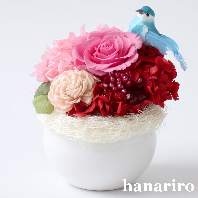 アレンジ「しあわせの青い鳥(赤ピンクミニ)」