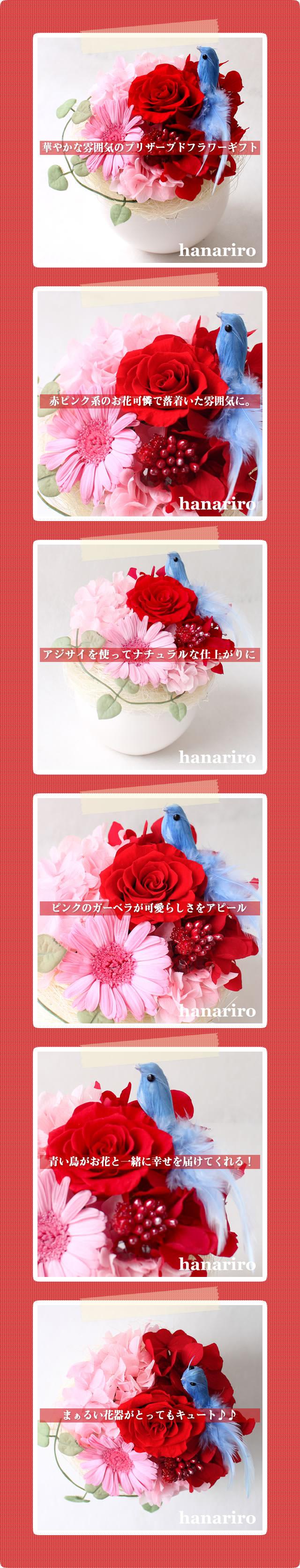 アレンジ「幸せの青い鳥(赤ピンクS)」/プリザーブドフラワーギフト