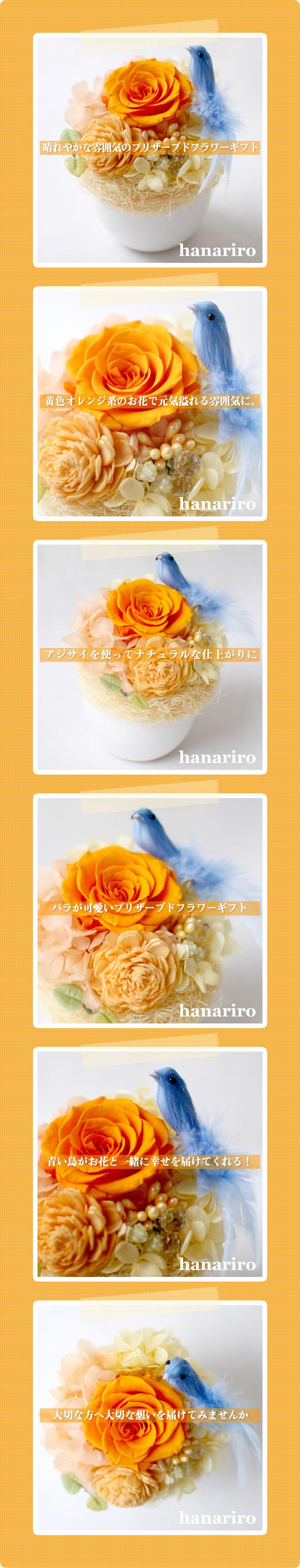 アレンジ「幸せの青い鳥(黄色オレンジミニ)」/プリザーブドフラワーギフト