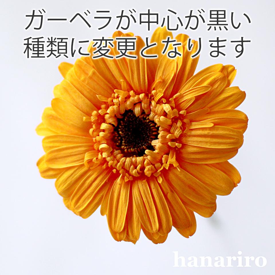 アレンジ「フレッシュオレンジ」