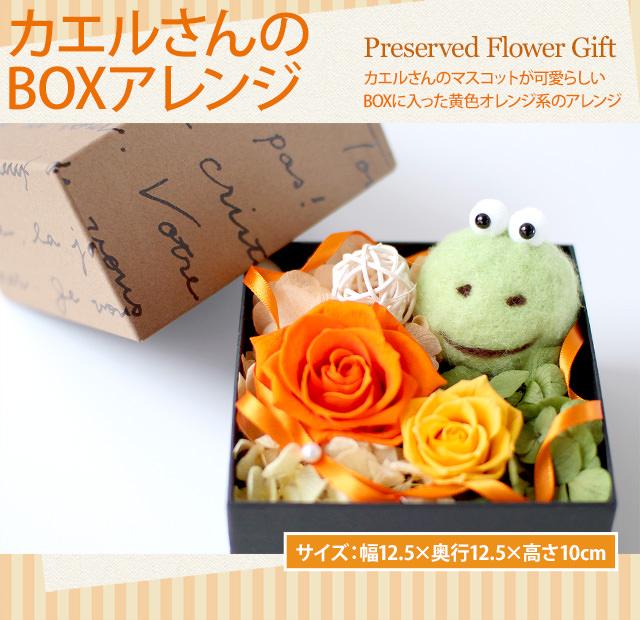 アレンジ「カエルさんのBOXアレンジ」-プリザーブドフラワーギフト-花屋-フラワーギフト-インターネット宅配花屋さん花RiRo