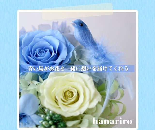 アレンジ「幸せの青い鳥(ブルーL)」/プリザーブドフラワーギフト