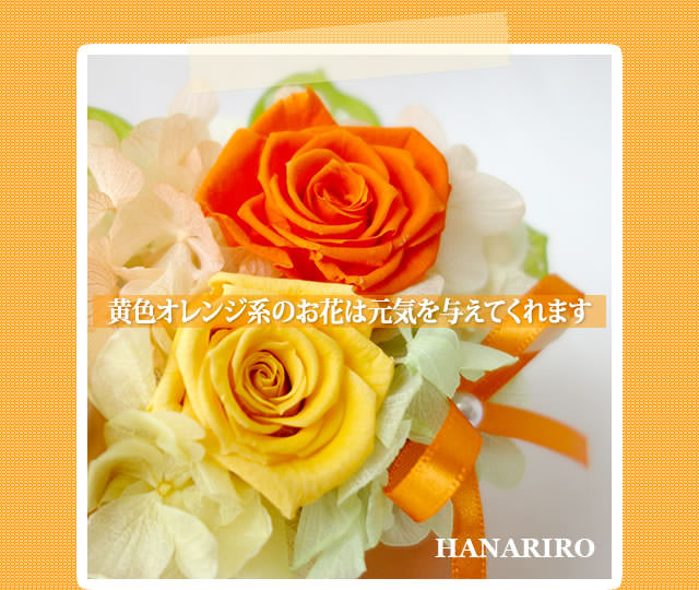 アレンジ「イヌさんアレンジ」/プリザーブドフラワーギフト