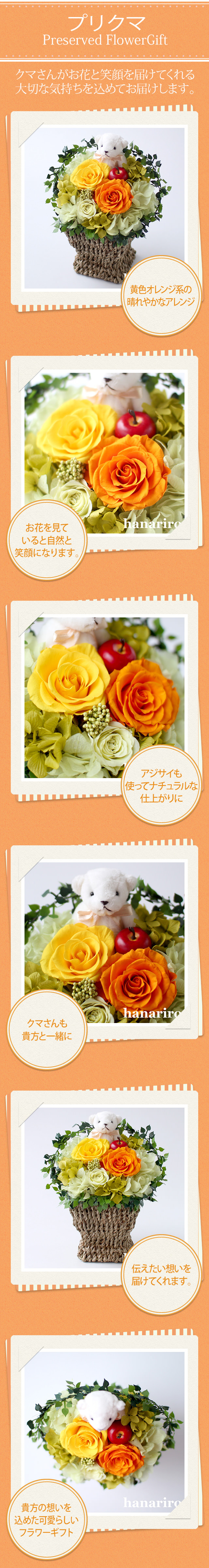 アレンジ「プリクマ」/プリザーブドフラワーギフト