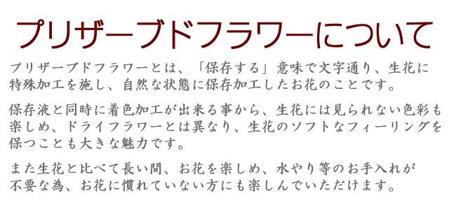 アレンジ「ルビーレッド」/プリザーブドフラワーギフト