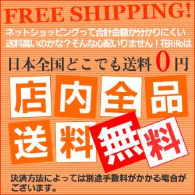 送料無料-花屋-フラワーギフト-インターネット宅配花屋さん花RiRo