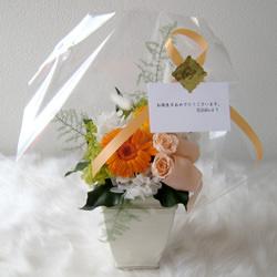 花屋-フラワーギフト-インターネット宅配花屋さん花RiRo-宅配花屋さん花RiRoの7大特典(メッセージカードについて)