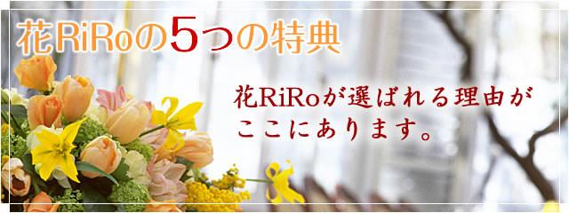 花屋-フラワーギフト-宅配花屋花RiRo-花RiRoの7つの特典